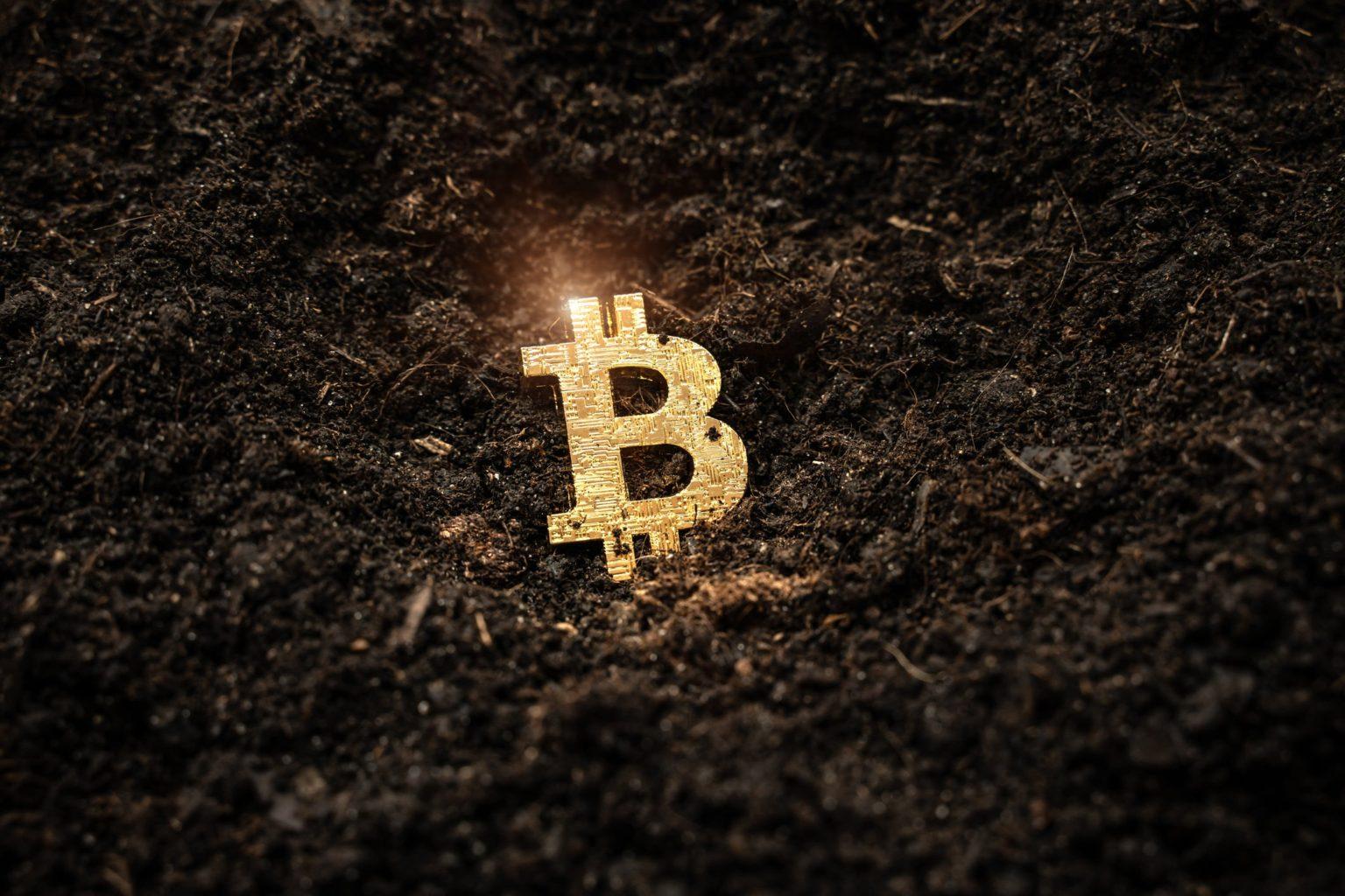 Как выросло мошенничество с криптовалютой